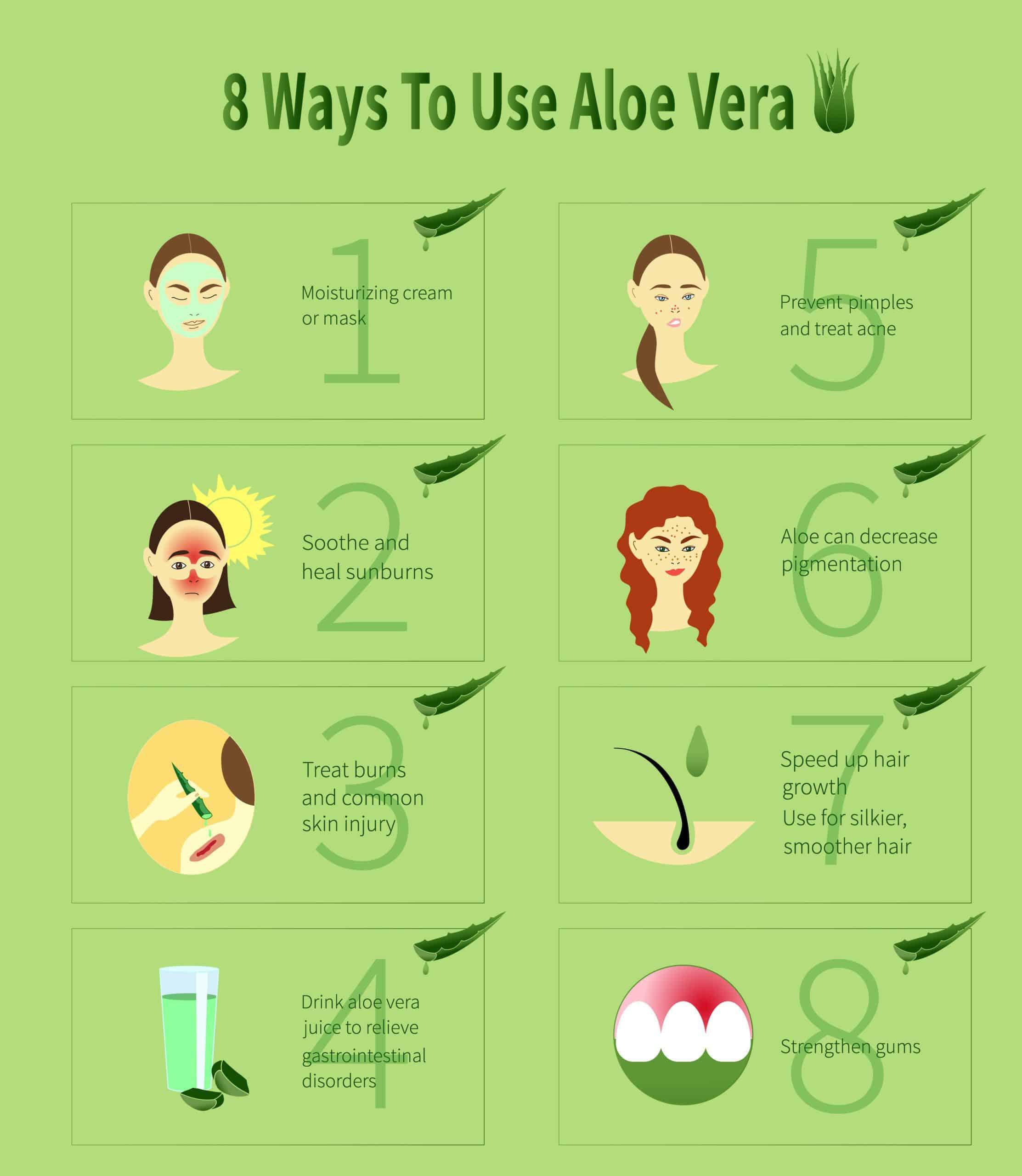 Aloe Vera infographic.Ways To Use Aloe Vera.